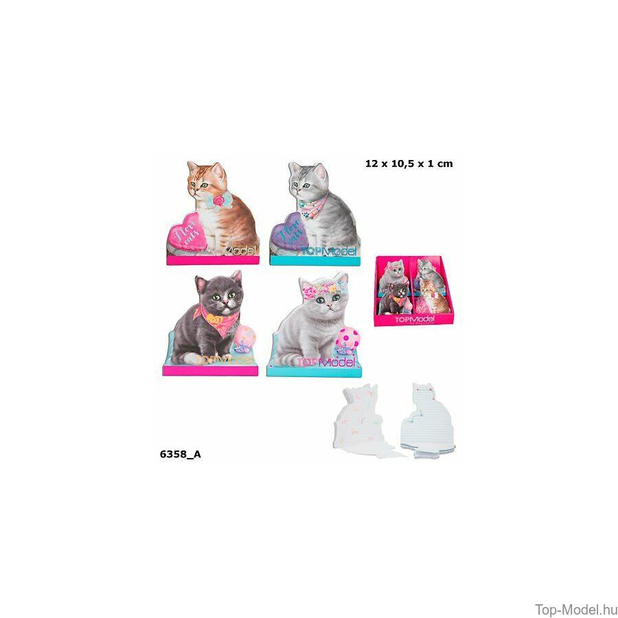 TOPModel Kitty Cicás notesz